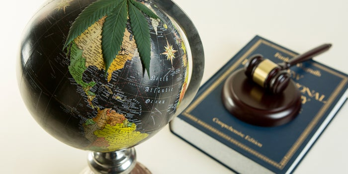 globe and legal gavel with legal book