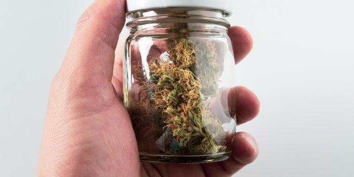 person holding glass jar of cannabis