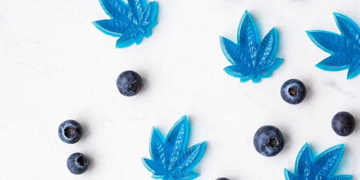 blue gummies shaped as marijuana leaves, and blueberries scattered on a table