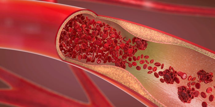 red blood cells in arteries