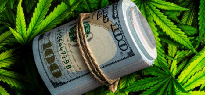 money rolled up in bundle against marijuana leaves in the back ground