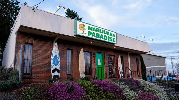 outside view of a cannabis store