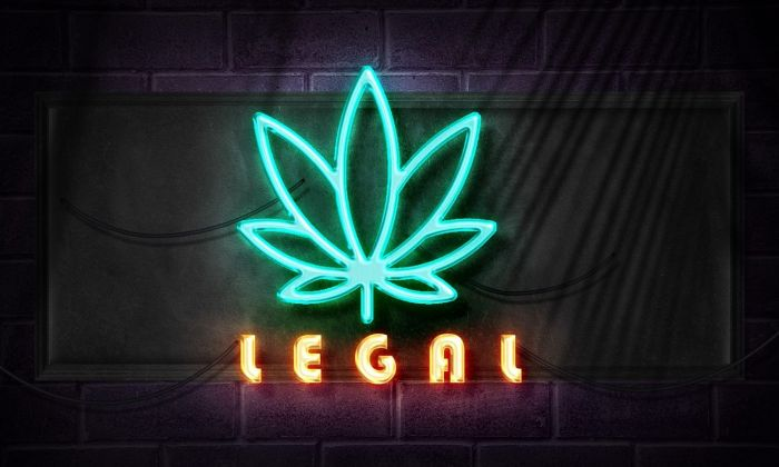 "neon sign of marijuana leaf that says ""legal"""