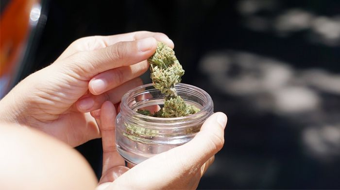 person taking out cannabis buds from a small glass container