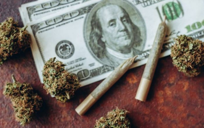 money with cannabis buds and joints