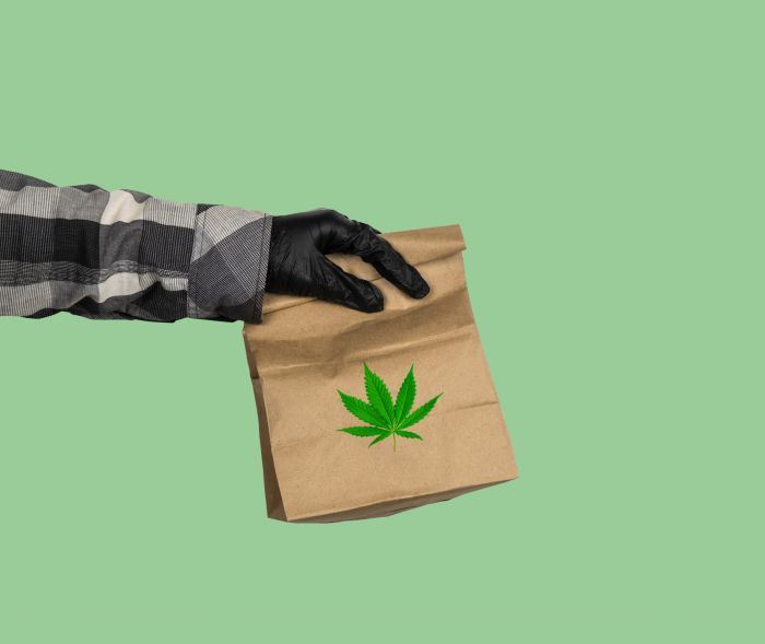 someone holding out brown paper bag with marijuana print