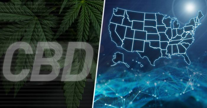 The words CBD with an illuminated map of america
