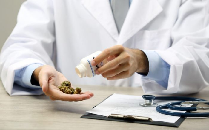 doctor holding cannabis in his hand