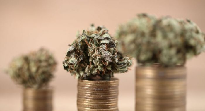 pennies piled together with a cannabis bud on top of three