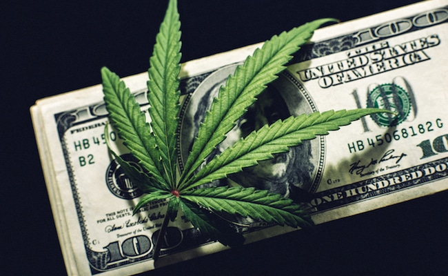 3 Cannabis Stocks On Track to Hit $1 Billion in Revenue Next Year