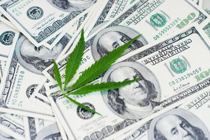 marijuana leaf on money