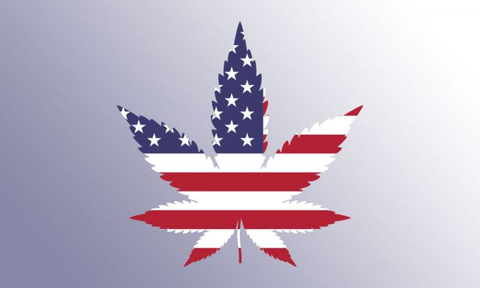 us flag in a marijuana leaf