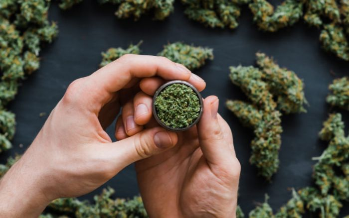 Montana Lawmakers Advance Three Bills To Implement Legal Cannabis