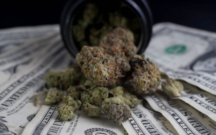 cannabis buds on top of fanned out money bills