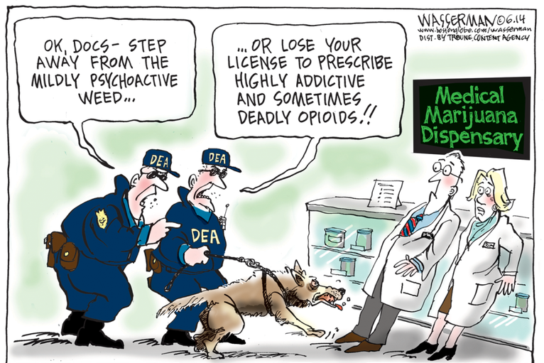 The Great Drug Debate: The Highs and Lows of American Drug Policy