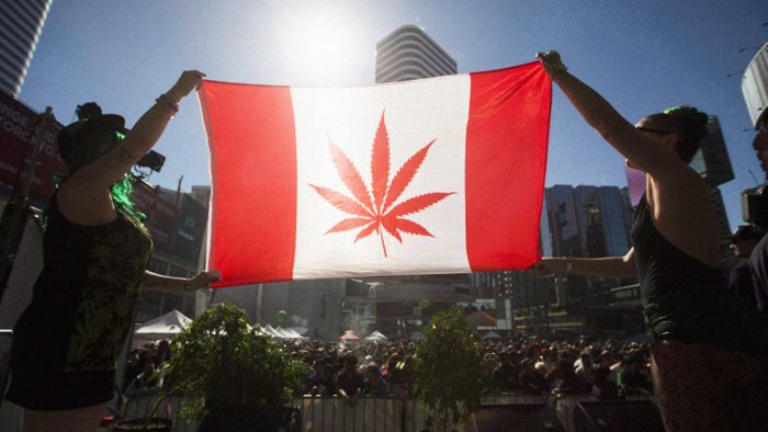 Canada: Governments earned $186M in pot taxes in 5.5 months of legalization