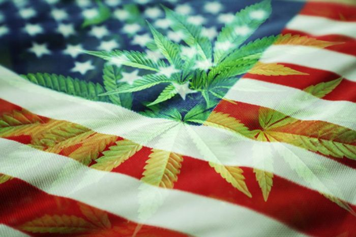 The American Entrepreneur Is Alive And Well-In Cannabis