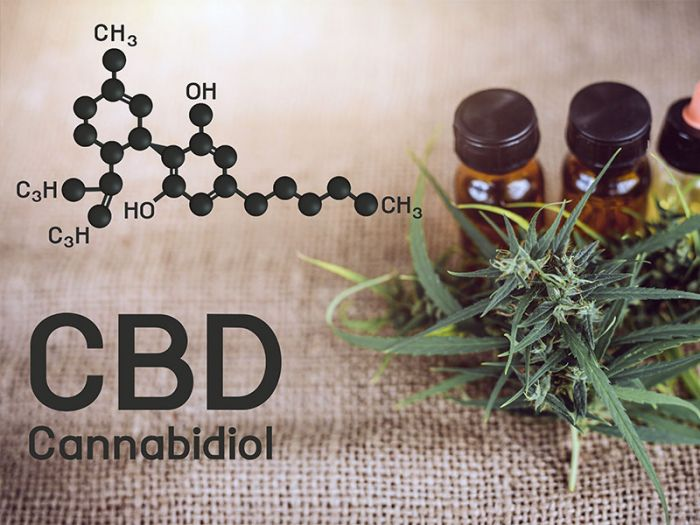 text: cbd, with a diagram of the composition and cannabis oil and plants laid by