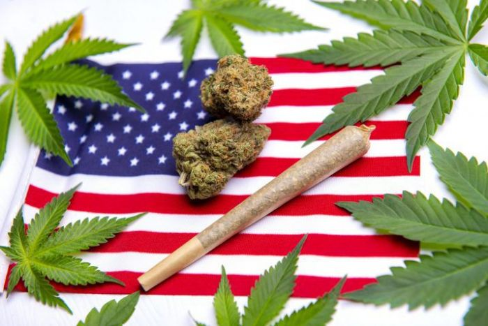 Military vets, football players and moms across the U.S. band together to fight for cannabis legalization