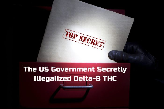 The US Government Secretly Illegalized Delta-8 THC