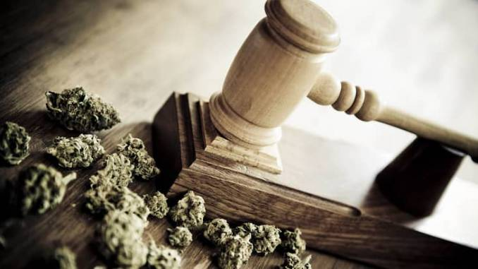 legal gavel next to a pile of cannabis buds