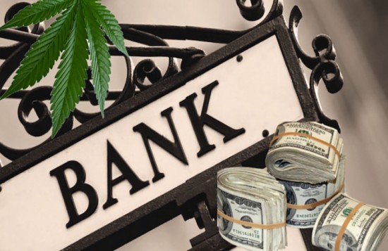 sign that reads bank surrounded by some money and marijuana leaves