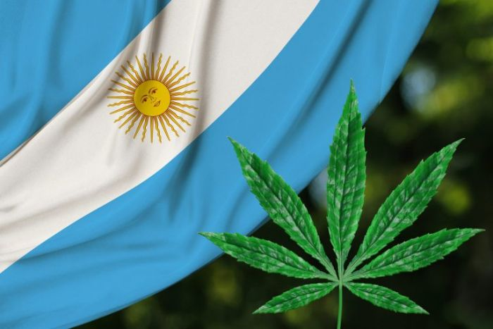 Argentina Legalized Medical Cannabis in 2017 – and Gives It Away for Free