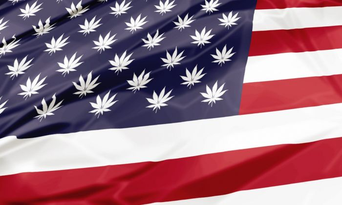 State by State Cannabis Legislation – What's Legal Now and Where?