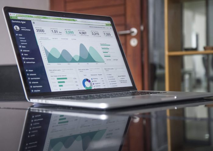 laptop showing graphs and charts