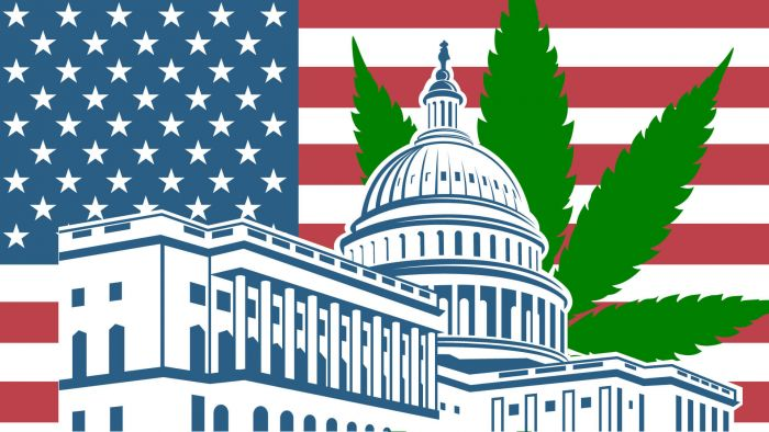 Lawmakers Call for Cannabis and Police Reform