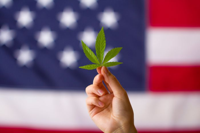 A New Filing Of A Revised Federal Cannabis Reform Bill Is On The Way To The House