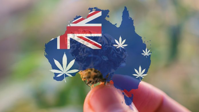 Australian Medical Cannabis Inquiry Update
