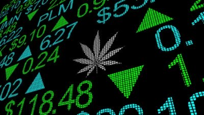 7 Marijuana Stocks to Watch as the Presidential Election Approaches