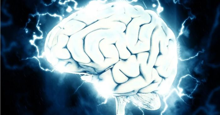 image of a brain glowing white