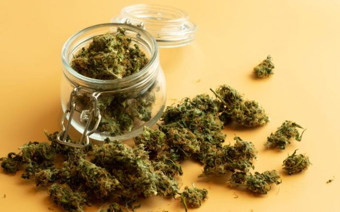 jar overfilled with cannabis buds