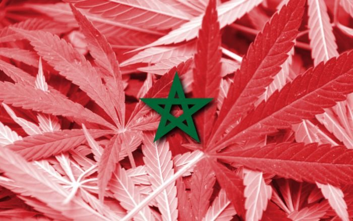 a green star symbol on top of red marijuana leaves