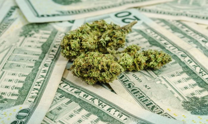 Officials Say That Chicago Cannabis Taxes May Exceed 41% By Summer