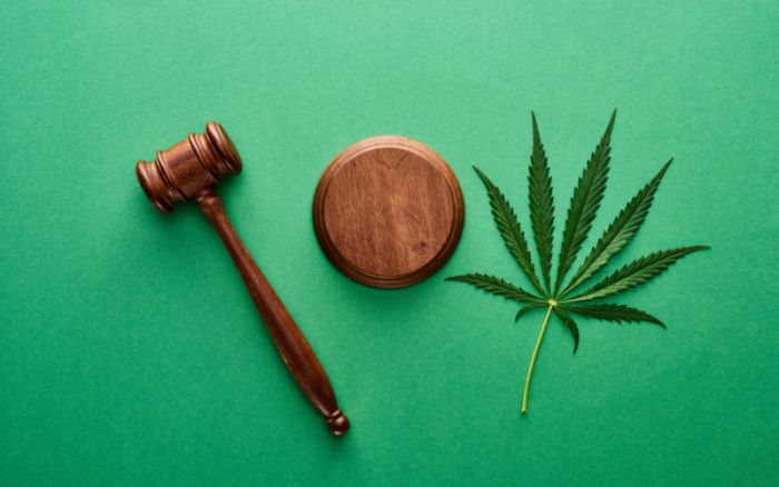 a green background with legal gavel and marijuana leaf