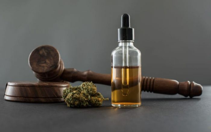 legal gavel with cbd oil in bottle