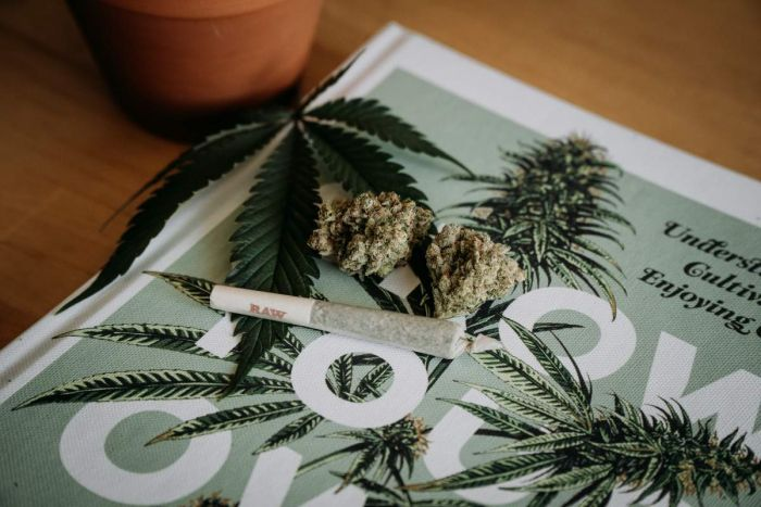 magazine with cannabis bud and blunt on top