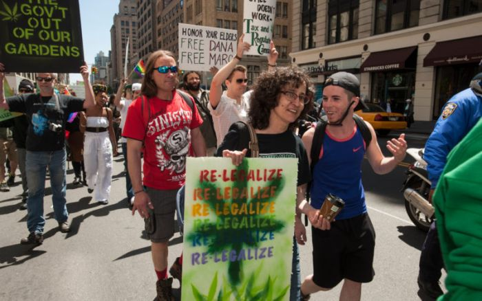Flower to be Permitted Following First Regulatory Meeting in New York