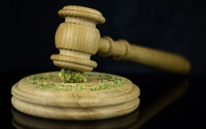 Court Gavel with marijuana