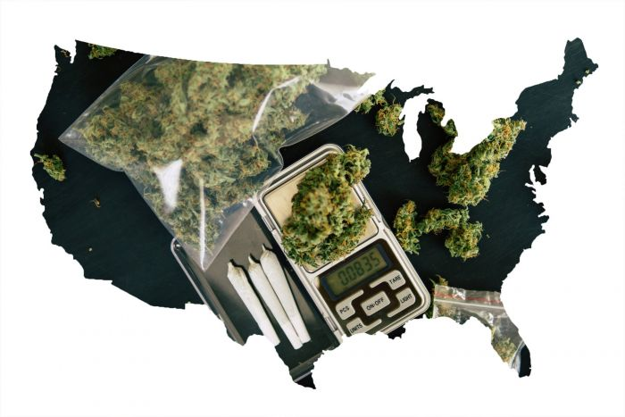 These 5 States Are Voting on Marijuana in November