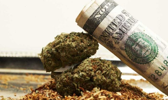roll of money stacked on top of cannabis buds