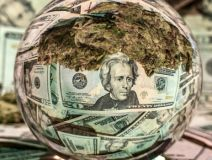 round ball reflecting money and cannabis buds